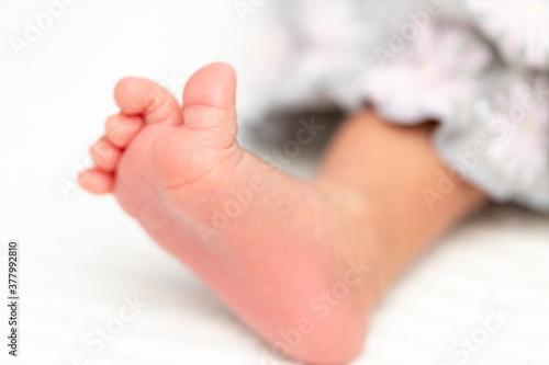 Tela 幼い赤ちゃんの足
