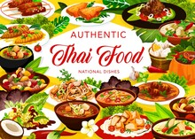 Thai Cuisine Restaurant Menu Meals Vector Banner. Chicken Pad, Miso And Tom Yum Soup, Shrimp Broth, Fish Meatball Curry And Pumping With Baked Cream, Coconut Ice Cream, White Eggplant And Red Curry
