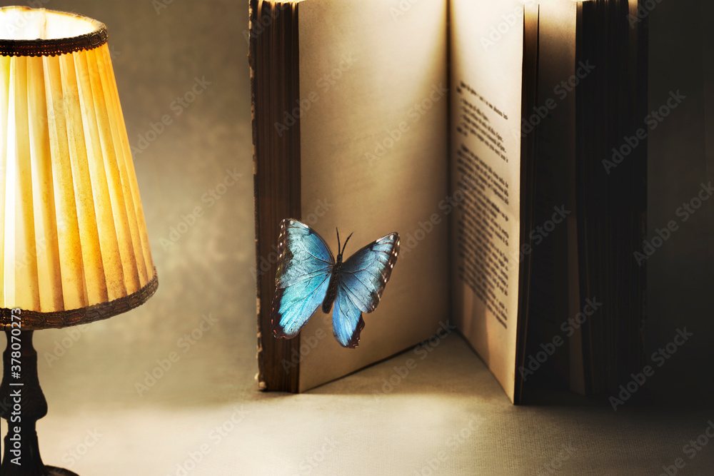 Fototapeta surreal and imaginative moment of a butterfly entering the pages of a book for a new story