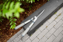 Gardening And Tools Concept - ...