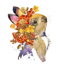 Cute Rabbit. Watercolor Illust...