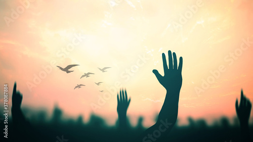 International migrants day concept: Silhouette many people raised hands with birds flying over autumn sunset background