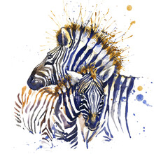Cute Zebra. Watercolor Illustr...