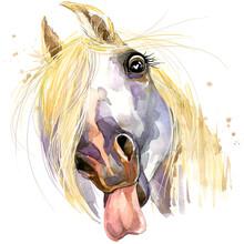Cute White Horse. Watercolor I...
