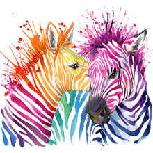 Cute Zebra. Watercolor Illustration. Wild Animals. African Nature. Fashion Design. Exotic Wildlife.
