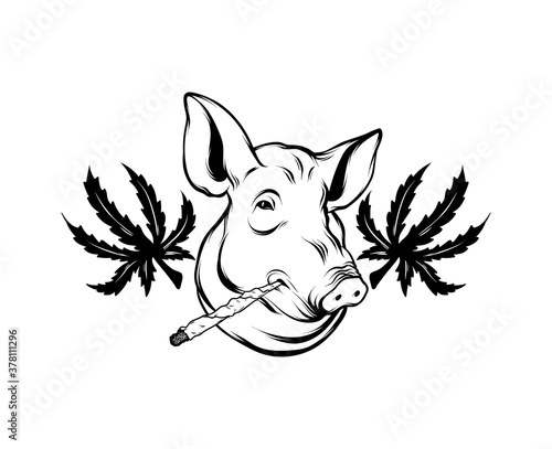 Canvas Print Vector hand drawn illustration of pig's head with leaf of marijuana isolated