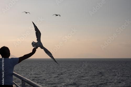 a man feeding seagull in ferry Fototapet