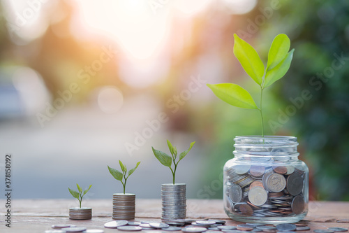 Saving money by hand puting coins in jug glass on nature background Canvas