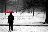 person with umbrella in winter
