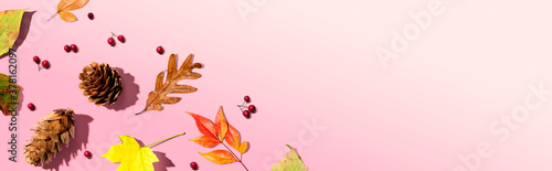 Fototapeta Colorful autumn leaves with pinecones overhead view - flat lay obraz