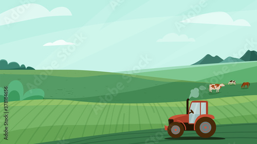 Fototapeta Farm landscape vector illustration with green meadow field, tractor and animal cow horse. Nature spring or summer farmland scenery. Countryside for organic production background obraz