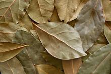 Lots Of Bay Leaf Background Im...