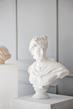 Plaster Bust. Interior Design ...