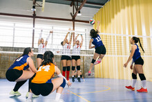 Female Volleyball Players Catc...