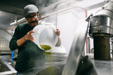 Male Brewer Adding Hop Into Beer