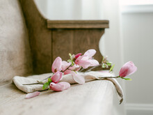 Tulip Magnolia Blossom Laying On Old Wooden Bench