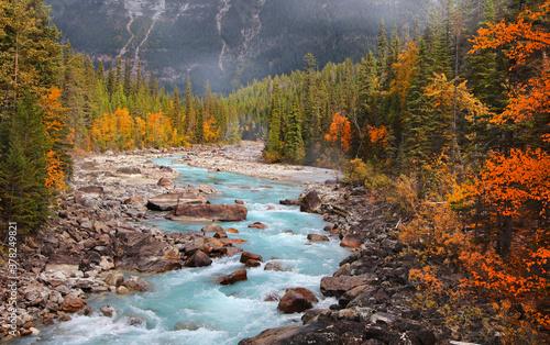 Fotografia Boulders and rocks in fresh water stream at rural British Columbia in autumn tim