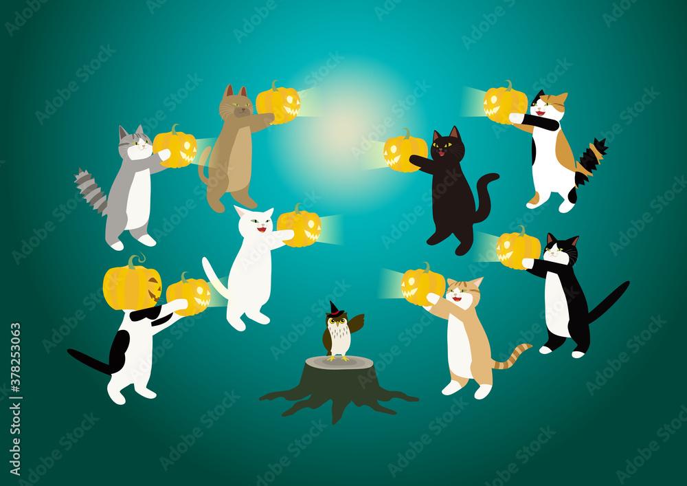 Fototapeta 猫のハロウイーン パンプキンで遊ぶ猫たちとフクロウ ひとりおおい!