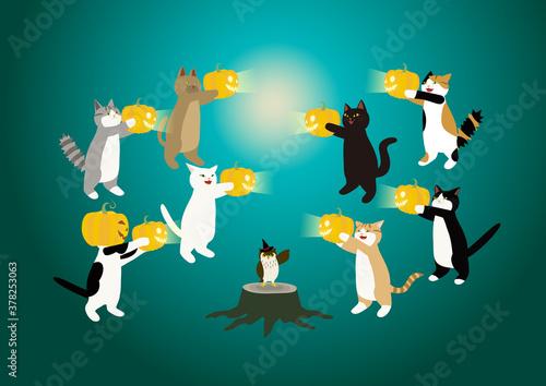 猫のハロウイーン パンプキンで遊ぶ猫たちとフクロウ ひとりおおい!  Wallpaper Mural