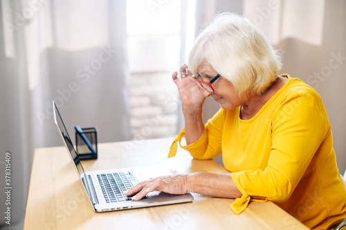 Fototapeta A senior concentrated business lady staring at the screen and lowered her eyeglasses while using laptop. Side view obraz