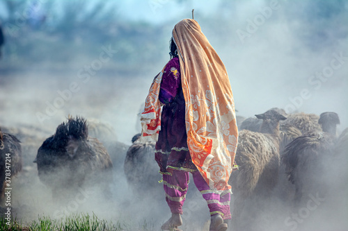 a shepherdess with flock of sheep in dust Fototapete