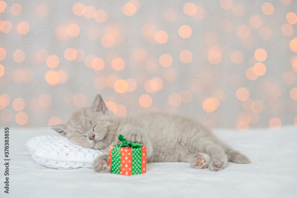 Funny kitten sleeps on a pillow on a bed at home on festive background with gift box