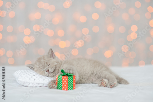 Fototapeta Funny kitten sleeps on a pillow on a bed at home on festive background with gift box obraz