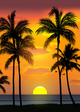 Summer Tropical Beach Background With Palms, Sky Sunrise And Sunset. Summer Party Placard Poster Flyer Invitation Card. Summertime, Vector Illustration.
