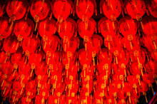 Taiwan, Taipei, Red Paper Lanterns Hanging In Buddhist Temple In Shilin Night Market