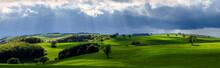 Beautiful Scenery Of A Green L...