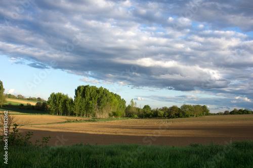 Fototapeta View on Hungarian landscape