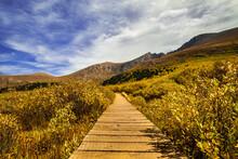 Mount Bierstadt On Guanella Pass Autumn In Colorado