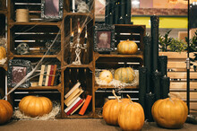 Cabinet In The Interior Is Decorated For Halloween. Autumn Halloween Decor With Skulls, Pumpkins And Cobwebs. Background.