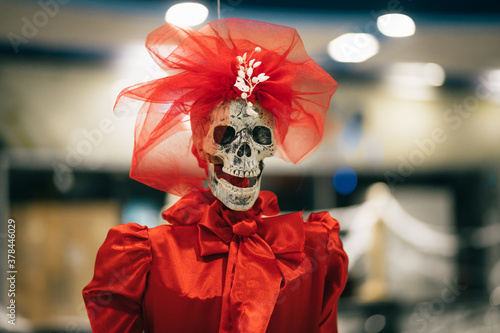 Skeleton of a woman in a red dress indoors, decorations for Halloween Slika na platnu