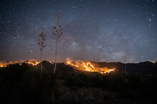 Desert Wildfire At Night With ...