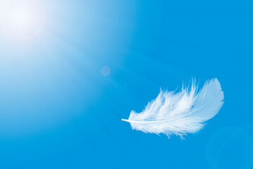 Feather abstract freedom concept background. Light and soft fluffy white feather floating in a blue sky.
