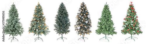 Fotografiet Beautiful Christmas trees on white background