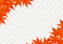Background Image With Maple Leaves On The Top And Bottom CHECKER