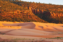 State Park Coral Pink Dunes