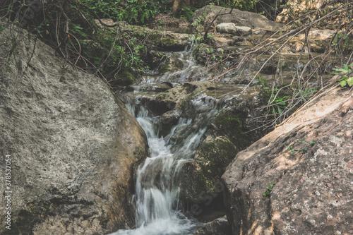 Cascada, riachuelo de montaña en el bosque