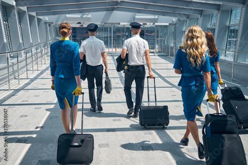 Tela Airline workers carrying travel suitcases at airport terminal