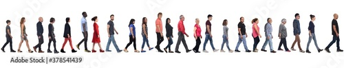 large group of mixed people walking on white background,