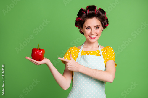 Fototapeta Photo of lovely pretty young girl roller hairstyle beaming smile direct finger hold paprika presenting fresh recommend choose wear dotted apron shirt isolated green color background obraz