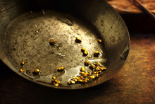 Finding Gold. Gold Panning Or Digging. Gold On Wash Pan. Shallow Depth Of Field.