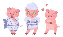 Funny Pig Going To Bed And Doing Spa Procedures Vector Set