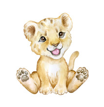 Cute Lion Cub Isolated On White Background. Lion Baby. African Animals. Safari. Illustration. Template. Hand Drawn. Greeting Card Design. Clip Art.