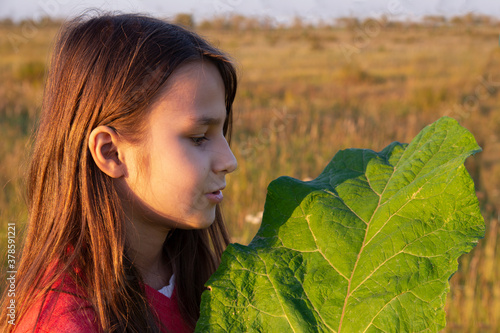 Photo A girl with long hair holds a large green burdock leaf in a field