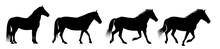 The Horse Silhouettes Are Isol...