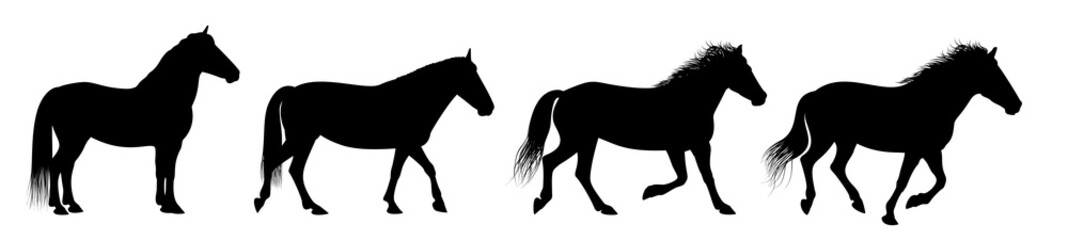 The horse silhouettes are isolated on the white background.