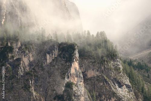 Cuadros en Lienzo morning mist